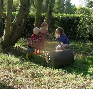 Garden roller Blog V