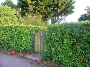 Sapphire gate for Blog V