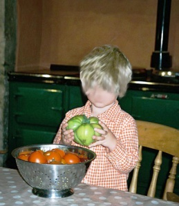 Big tomato Blog 13