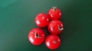 tomatoes Blog XI